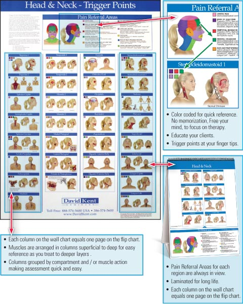 trigger-point-wall-and-flip-charts